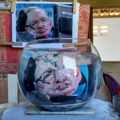 86 Zandschildering Stephen Hawking